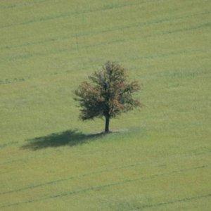 Radcovská trojdňovka (8.-10.9.2006)