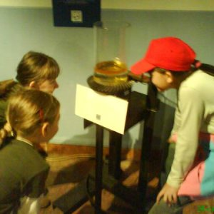 Výlet včielok do múzea (28.10.2006)