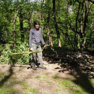 1.5.2007  12:13, autor: Amigo / Povysekávali náletové dreviny