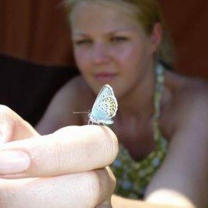 15.7.2007  11:10, autor: Amigo / Chytila jsem na pasece motýlka
