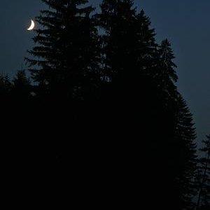 19.7.2007  21:41, autor: Teoretik / Večerná nálada