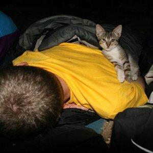 27.8.2007  5:57, autor: Teoretik / Mačiatko, nazvané Apolón, si Alana očividne dosť obľúbilo