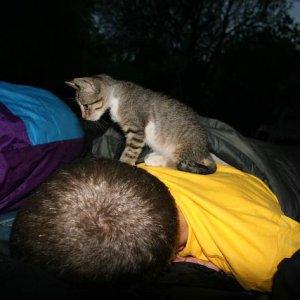 27.8.2007  6:01, autor: Teoretik / Alan, vstávaj! :-)