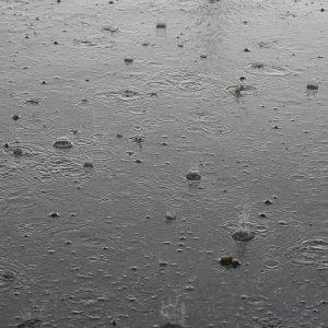 2.9.2007  16:26, autor: Teoretik / Prší viac