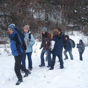 17.11.2007  9:58, autor: MartinKa / Sova velí pochodom vchod!