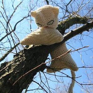 15.3.2008  11:46, autor: Teoretik / Mačiatko utieklo na strom a nechcelo zísť dole