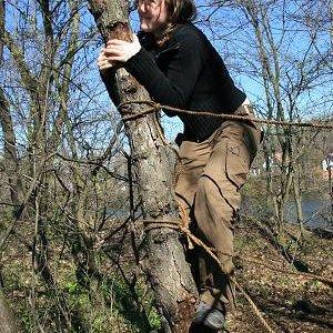 15.3.2008  11:56, autor: Teoretik / Gepa na záver prešla po strome