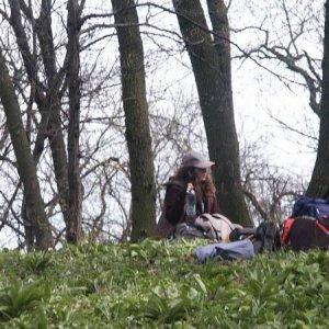 29.3.2008  13:27, autor: Cebig / vanish pauzička