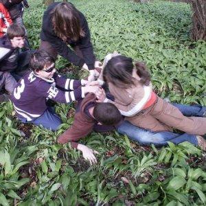 29.3.2008  14:10, autor: Cebig / Úloha - položiť Alana na lopatky