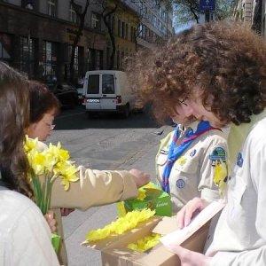 11.4.2008  10:26, autor: Viktor / Ďalší tím vyrazil do terénu
