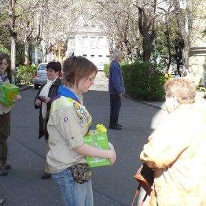 11.4.2008  10:28, autor: Viktor