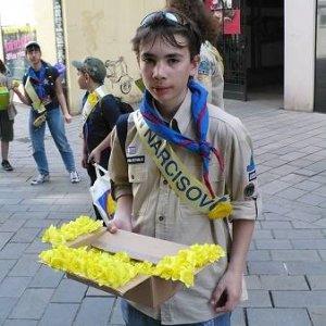 11.4.2008  11:17, autor: Viktor / Škrečok v akcii