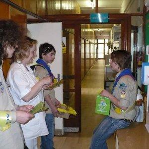 11.4.2008  11:59, autor: Viktor / V nemocnici