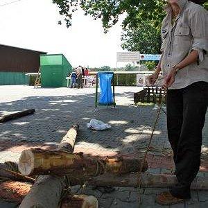 14.6.2008  11:01, autor: Teoretik / Začína viazanie katapultu