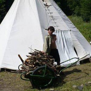 6.7.2008  14:33, autor: Amigo / Tak toto drevo by nám mohlo vydržať do rána... (Doktor)