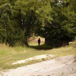 10.7.2008  17:15, autor: Šamot / Na Filovom laze