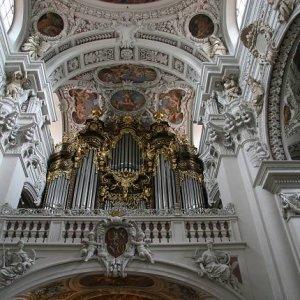 20.8.2008  14:10, autor: Teoretik / Najväčší organ v Európe