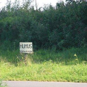 22.8.2008  15:10, autor: Teoretik / Na niektorých miestach to bol riadny humus