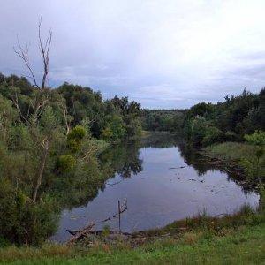 23.8.2008  19:44, autor: Teoretik / Večerná nálada v lužných lesoch