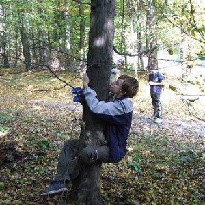 11.10.2008  13:25, autor: Johny / Máme radi stromy :-)