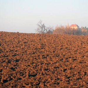 15.11.2008  7:48, autor: Teoretik / Kostolík sv. Michala