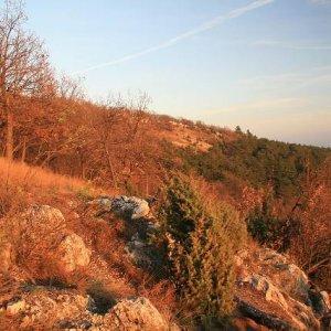 15.11.2008  15:48, autor: Teoretik / Orlie skaly pri západe Slnka