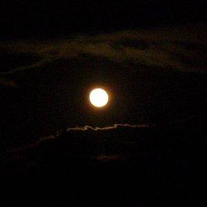 13.12.2008  17:09, autor: Amigo / Spln mesiaca...