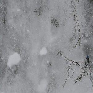 17.2.2009  12:27, autor: Teoretik / Žuch!