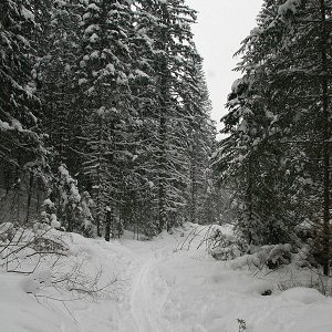 17.2.2009  13:17, autor: Teoretik / Zimná krása Nízkych Tatier