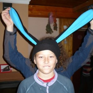 1.11.2009  12:50, autor: Amigo / (1.11.2009) Zajac sa nezaprie