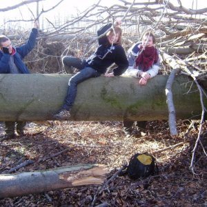 16.1.2011 0:00, autor: Aďo / Preliezanie takychto stromov moze byt docela zabava