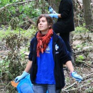 2.7.2011 11:22, autor: Teoretik / Zbierame všetko, čo do lesa nepatrí