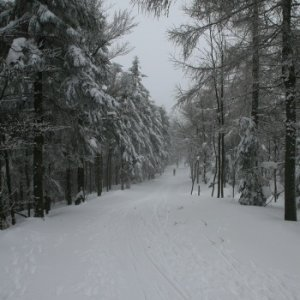 19.2.2012 10:48, autor: Teoretik / Pred nami bola hotová zimná rozprávka