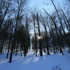 21.2.2012 12:27, autor: Teoretik / Zimná romantika