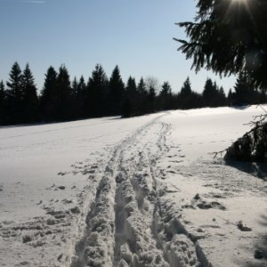 21.2.2012 15:28, autor: Teoretik / Na lúkach nad Kremnicou