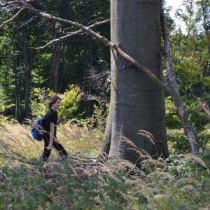 Jesenný výlet do Karpát (15.9.2012)