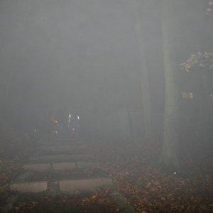 17.11.2012 21:59, autor: Teoretik / Noríme sa do hustej hmly