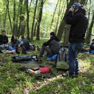 10.5.2014 7:38, autor: Teoretik / Ráno v lese nad Slavcom