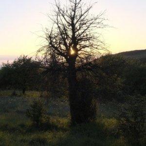 10.5.2014 19:47, autor: Teoretik / Západ Slnka nad Kečovom