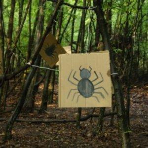 17.7.2014 19:03 / Cestu nám skrížili pavúky