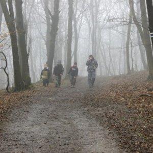 15.3.2015 11:25, autor: Vaniš / Chalani sa vynárajú z hmly