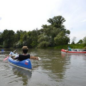 Splav Malého Dunaja (7. až 9.5.2015)