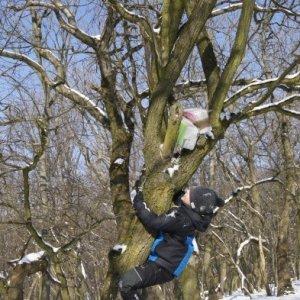 No predsa vylezieme na strom! / DSC04447