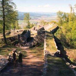 Zvyšky Pustého hradu