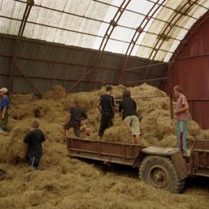 Našou úlohou bolo nakladať seno na vlečku a na inom mieste ho zase zložiť
