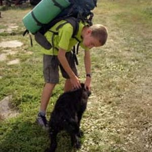Aďo, toho psíka si nemôžeš zobrať