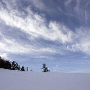 30.1.2005  14:20 / Zajtra bude snežiť...