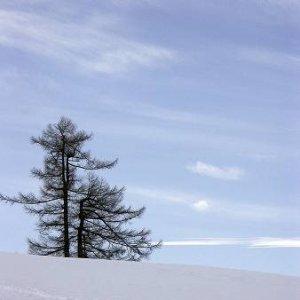 30.1.2005  14:20 / Náladovka