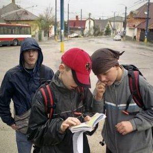 1.9.2005  17:05 / Dikobrazy išli presne podľa trasy