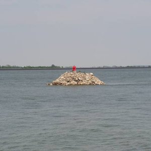 25.6.2005  12:59 / Ostrovy plné čajok